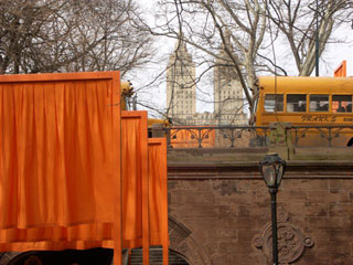 A view of Christo's Gates photographed by Patrick Burns