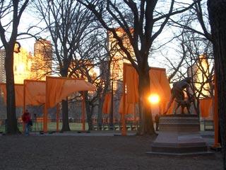 A view of Christo's Gates at dawn taken by James Bradburne